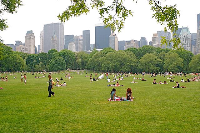 Central park, nơi tận hưởng không khí trong lành ở New York