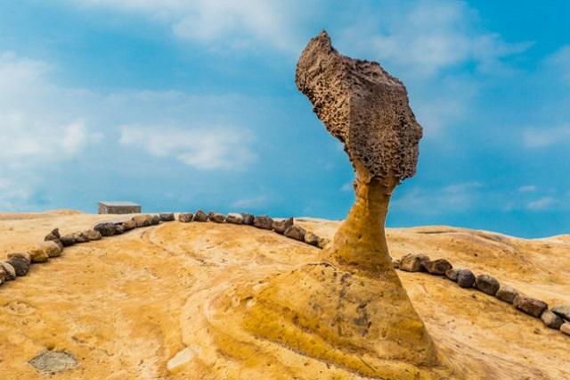 """Mõn đá """"Đầu Nữ Hoàng"""" nổi tiếng ở công viên Da Liễu"""