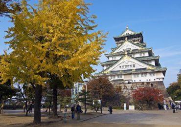 Điểm danh top 4 công viên đẹp nhất Osaka