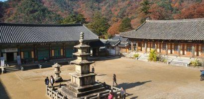 Những địa điểm Phật giáo nổi tiếng nhất Daegu