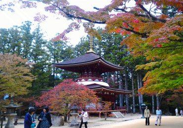 4 điểm đến hoàn hảo cho hành trình khám phá Nhật Bản