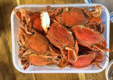 Những món hải sản nên thử khi đi du lịch Tết ở Phú Quốc