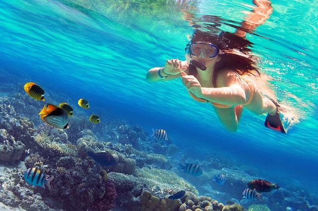 Những trải nghiệm thú vị không nên bỏ lỡ khi du lịch Honolulu